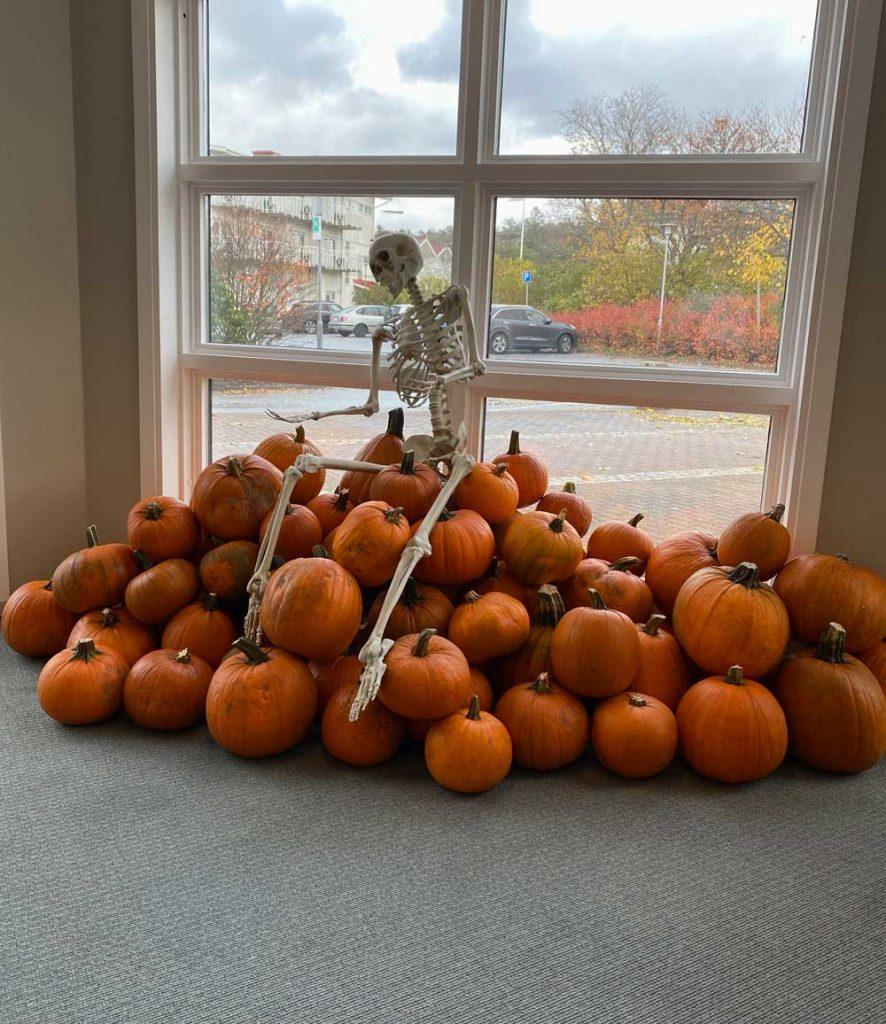 Skelettet Ben Rangel hälsar välkomna till pumpakarvning för helafamiljen under Halloween på hotellet TanumStrand