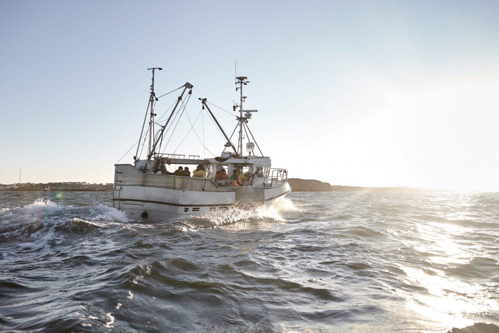 En fiskebåt är påväg ut på havet för att fiska färska havskräftor