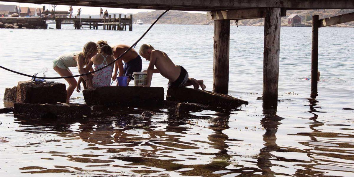Barn fiskar krabbor i barnklubben Sea Club på hotellet TanumStrand på Västkusten