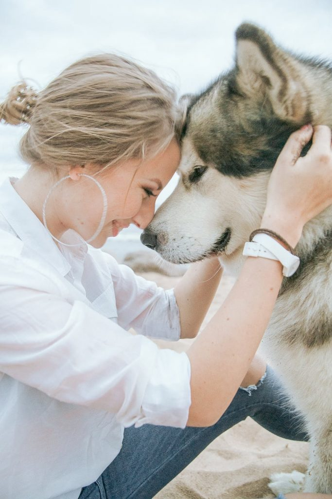 Res med hund längs västkusten i sverige och bo på hotellrum med hund på Tanumstrand