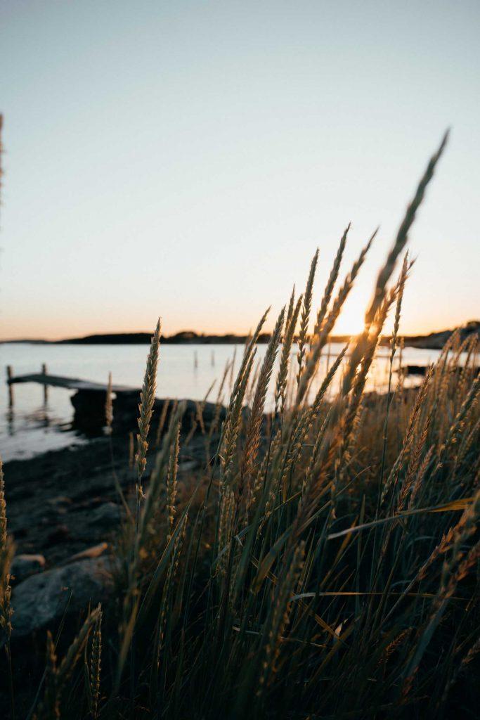 Vacker bild på solnedgången vid stranden och klipporna i Grebbestads skärgård